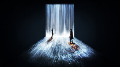 teamLab, 'Universe of Water Particles, Flowers and People, Transcending Boundaries - A Whole Year per Hour', 2017