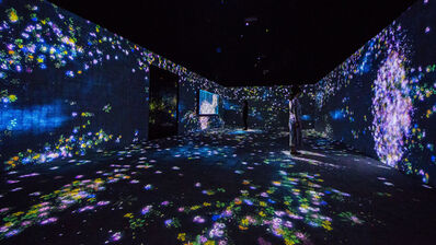 teamLab, 'Flowers and People, Cannot be Controlled but Live Together - A Whole Year per Hour', 2015