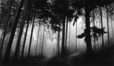 Robert Longo, 'Fairmount Forest', 2014