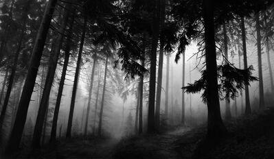 Robert Longo, 'Untitled (Fairmount Forest)', 2014