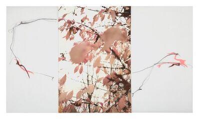 Sandi Haber Fifield, 'Untitled (LF17 #155)', 2017
