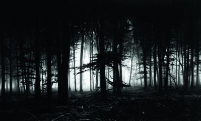Robert Longo, 'Untitled (Forest of Doxa)', 2014