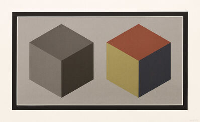 Sol LeWitt, 'Double Cubes in Grays and Colors Superimposed', 1989