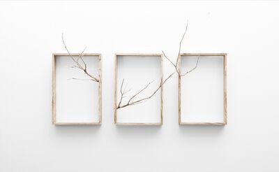 Ruann Coleman, 'Reach (Triptych)', 2017