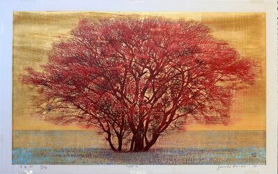 Joichi Hoshi, 'Green Field (B) Large', 1973