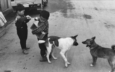 Henri Cartier-Bresson, 'Boys and Dogs', 1965
