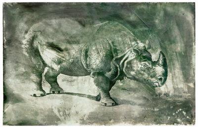 Johannes Brus, 'Nashorn', 1983