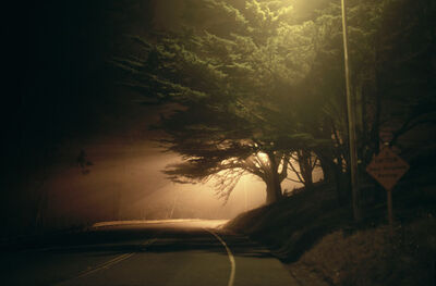 William Farley, 'Tree and Street Light, 2:30 A.M. @ Merchant St, West of the Golden Gate, SF, CA', 2007