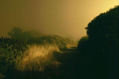 William Farley, 'Meadow - Diamond Heights, San Francisco, CA', 2010