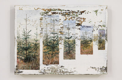 Jeppe Lauge, 'Trees in a row', 2019