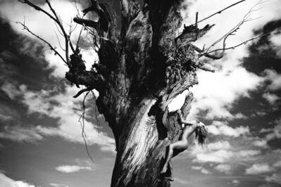 Mauricio Velez, 'Half Angels Half Demons #12', 2005