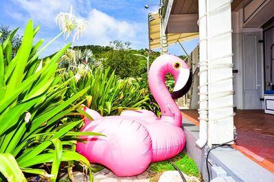Dolly Faibyshev, 'Pink Flamingo', 2017