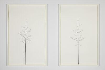 Peter Liversidge, 'Winter Drawing (Summer Version), 30 vs. 31, Winter Drawing (Summer Version),', 2011