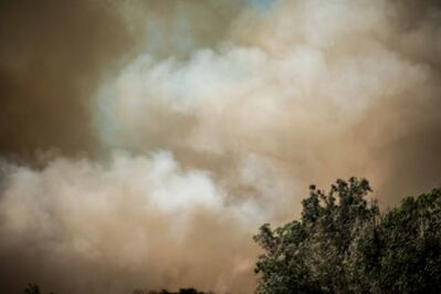 Robert Welkie, 'Tree Fire, Monrovia, California', 2016