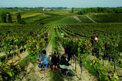 VINIV, 'Exclusive Fine Wine Experience in Bordeaux'
