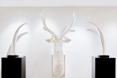 Joseph Rossano, 'Roosevelt Elk #1', 2017