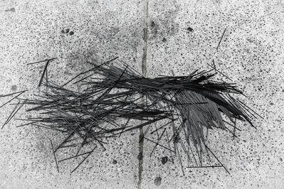 Lawrence Gottesman, 'Asymmetry No. 9'