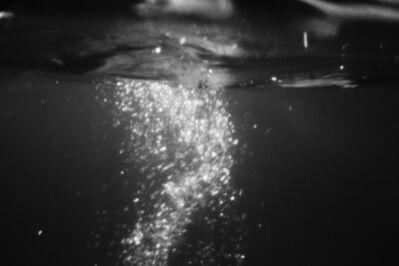 Fiona Struengmann, 'Evening Dive', 2016