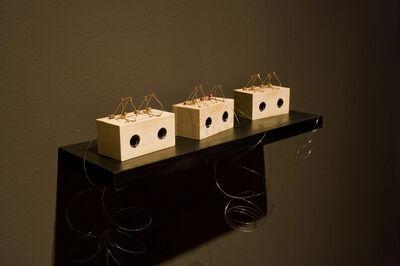 Greta Alfaro, 'A More Flimsy Device is Impossible to Imagine 1,2,3, ', 2013