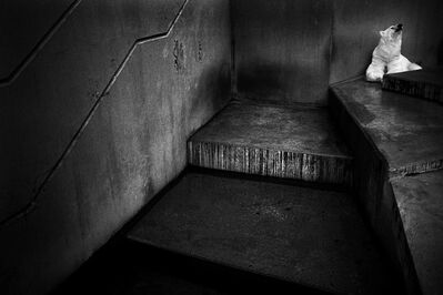 Britta Jaschinski, 'Concrete Bear', 1993
