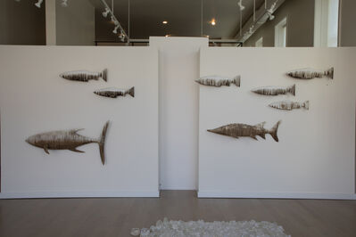 Joseph Rossano, 'EDNA: Salmon, Bluefin, Sturgeon', 2015-2018