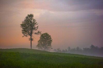 Jerry Freedner, 'Ground Fog 2', 2018