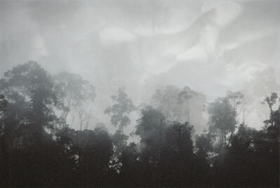 Lisa Roet, 'The Forest 2', 2000-2001