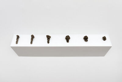 Federico Tosi, 'Like Ophiocordyceps', 2018