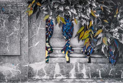 Kathy Dana, 'Garden Secret'