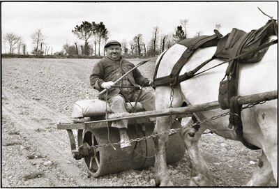 Henri Cartier-Bresson, 'Farmer, Region of Basse-Normandie, Calvados Department, France', 1960
