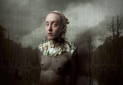 Bear Kirkpatrick, 'Hayley Ascia Monuste', 2015