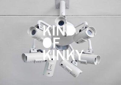 Dawn Ng, 'Surveillance Camera', 2012