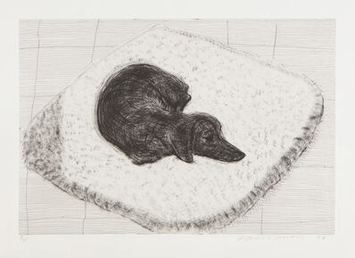 David Hockney, 'Dog Etching No. 12, from Dog Wall', 1998