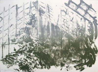 Joel Janowitz, 'Wash Greenhouse ', 2005