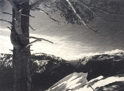 Ansel Adams, 'On The Heights', ca. 1927