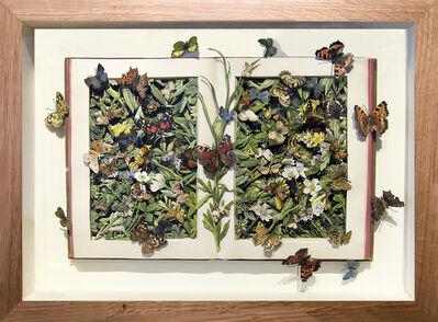 Kerry Miller, 'EUROPEAN BUTTERFLIES & MOTHS/FAMILIAR SWISS FLOWERS', 2018