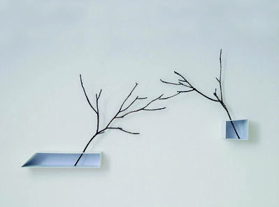 Marisa Albanese, 'Senza Ali / Without Wings', 2012