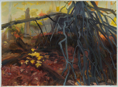 Kristin Musgnug, 'Fallen Trees', 2015