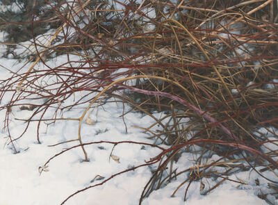 Stephanie Bush, 'Winter (Brush 2)'
