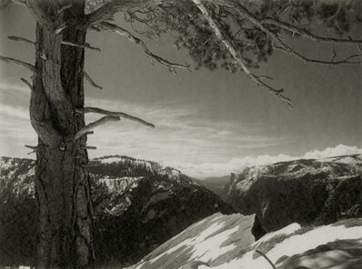 Ansel Adams, 'On the Heights, Yosemite Valley', 1927