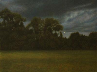 Davis Morton, 'C.V. Sullivan's Wood', 2014