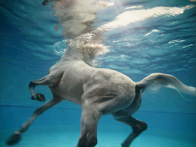 Vanessa von Zitzewitz, 'Underwater 8, Doha', 2009