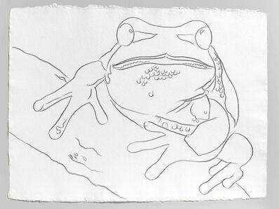 Andy Warhol, 'Endangered Species: Pine Barrens Tree Frog ', 1983