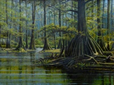 Frank Corso, 'The Cypress Forest', 2018-2019