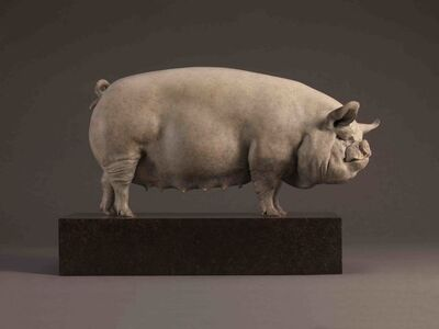 """""""Alice """" Middle White Sow"""