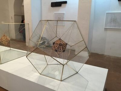 Icosahedron within a Dodecahedron