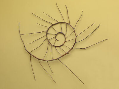 Andy Goldsworthy, 'Ammonite'