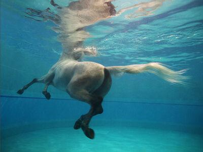 Vanessa von Zitzewitz, 'Underwater 11, Doha', 2009