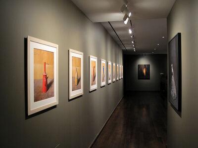 Joel Meyerowitz: Morandi, Cézanne and Me