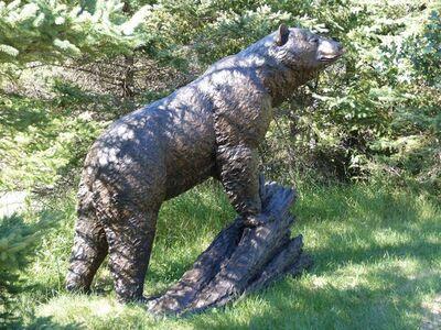 Peter Sawatzky, 'Monumental Black Bear', 2016